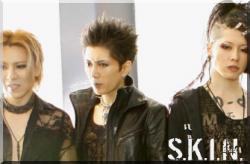 S.K.I.N : Yoshiki, GACKT, Miyavi